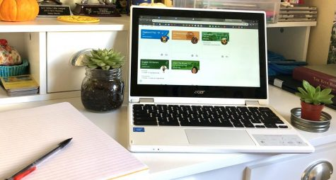 Waiting for Google Classroom to load before Zoom class starts, a student enjoys succulents around their desk.